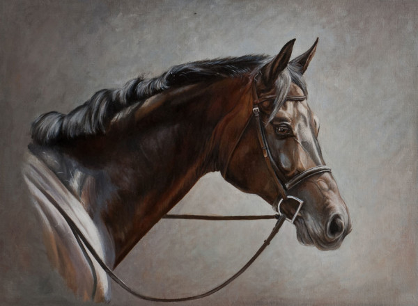 Portraits of Horses in Oil