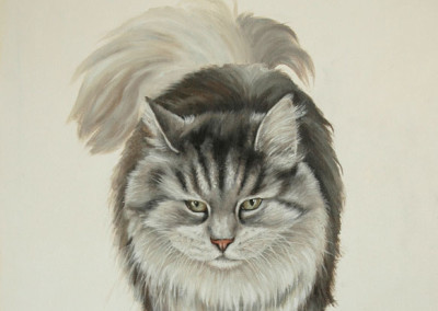 From photo to portrait of a Persian cat strutting in oil on canvas