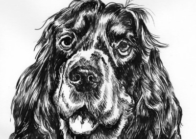Dogs in Ink